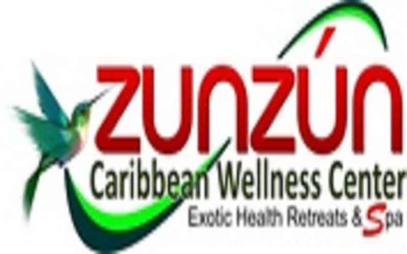 zunzun logo